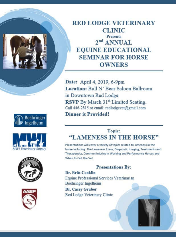 2nd Annual Educational Seminar for Horse Owners – Lameness